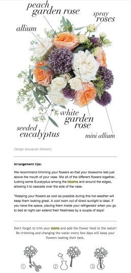 Stem & Bloom email